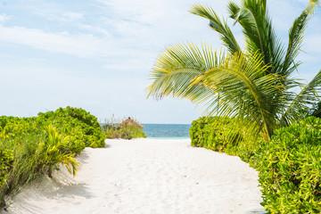 Abaco Island, Bahamas