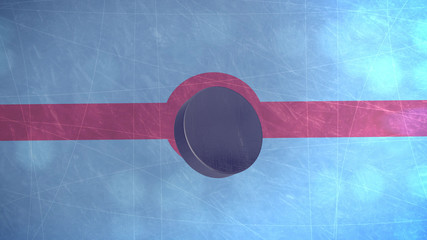 3D Hockey Puck
