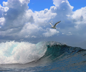 beautiful seascape with a noisy foaming waves and seagull on a blue sky with clouds