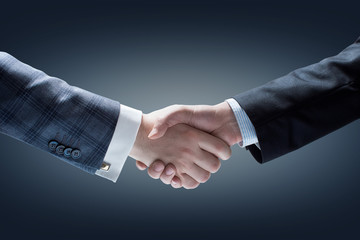 A handshake of business people