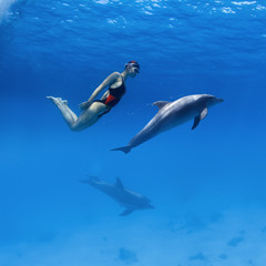Good relationship with wild animals. Professional swimmer girl in sport swimsuit and friendly dolphins playing in deep blue sea underwater