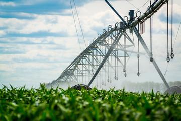An irrigation pivot watering a field