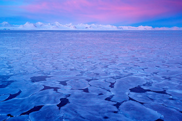 Land of ice. Winter Arctic. White snowy mountain, blue glacier Svalbard, Norway. Ice in ocean. Iceberg twilight in North pole. Pink clouds with ice floe. Beautiful landscape. Night ocean with ice.