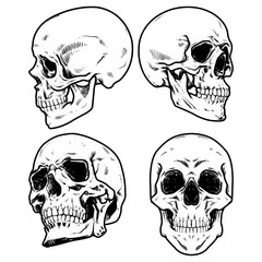 Skull Vector illustration, Collection Of Hand Drawn Skulls, Hard Core Skull Vector Art
