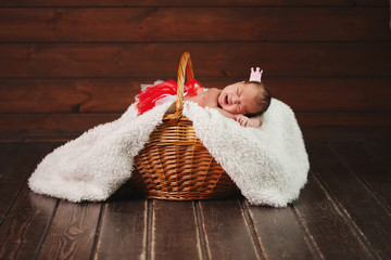 cute newborn baby in the basket
