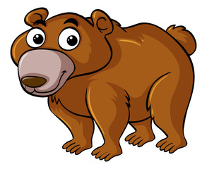 Brown bear with happy face
