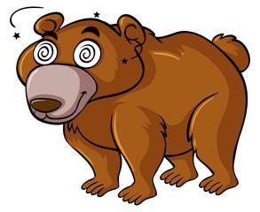 Grizzly bear with dizzy eyes