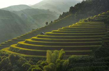 Terraced rice field landscape of Mu Cang Chai, Yenbai, Northern Vietnam