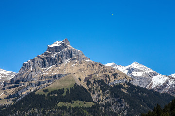 Alpine Mountains