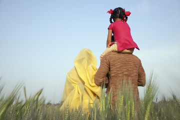 Rear view of rural family in the field