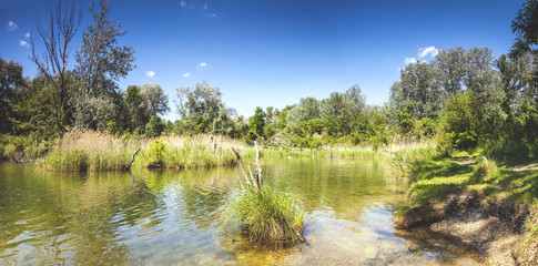 Pond Dechantlacke of the Danube Auen National Park Vienna