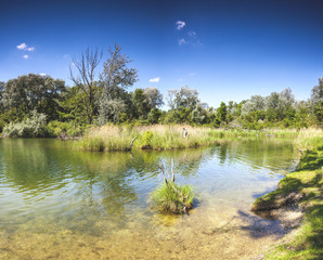 Pond Dechantlacke of the Danube Auen National Park Vienna