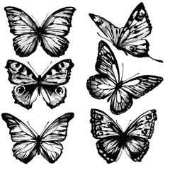 black butterflies, watercolor, isolated on a white