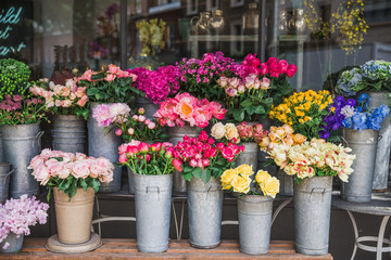 Photography of beautiful flowers on the street