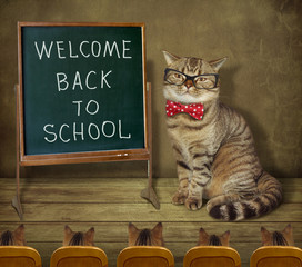 """The cat teacher with glasses and a bow tie wrote on the board """"Welcome back to school""""."""