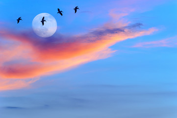 Wall Mural - Moon Birds Silhouettes