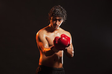 Young male boxer wearing gloves