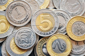 Close up picture of Polish Zloty coins, shallow depth of field.