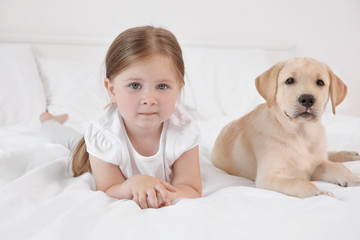 Cute child with Labrador Retriever on bed