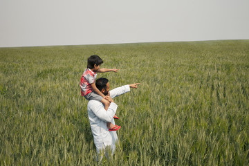 Father and son pointing at something while standing in wheat field