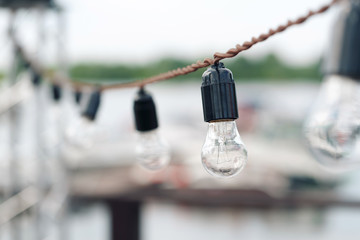 Incandescent bulbs Mountain Lake background. wedding or holiday outdoors