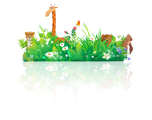 animals nature backgrounds