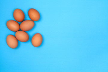Chicken egg on blue background with space for copy.