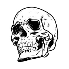 Skull Vector illustration, Collection Of Hand Drawn halloween, Hard Core Skull Vector Art