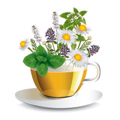 Herbal tea in a transparent cup with aromatic herbs, a conceptual idea for the label