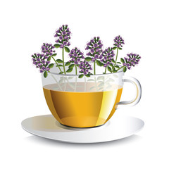 Vector illustration aromatic tea with thyme in a transparent cup with flowers, a conceptual idea for the label