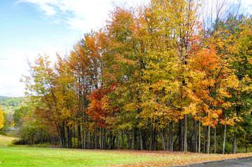 Autumn landscape in Vermont, New England