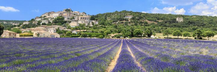 Lavender field and Simiane la rotonde village in Provence France