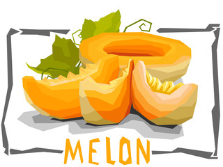 Vector simple illustration of melons.