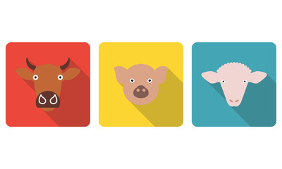 Farm animals set. Cow, pig and sheep head or face icons in flat style. Colorful vector illustration.