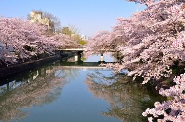 京都 琵琶湖疏水