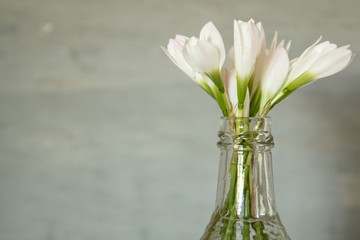 White flowers rain lily in clear glass bottle vase on gray background