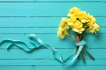 Yellow narcissus or daffodil flowers on turquoise wooden background.