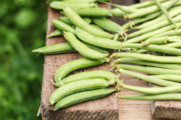 fresh harvest of green beans and green peas