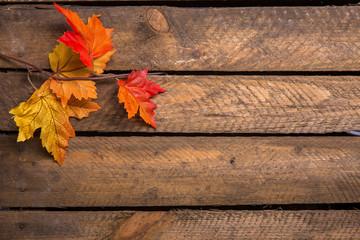 Bunte Herbstblätter