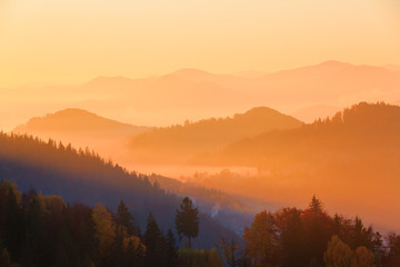 The setting sun colors the hills covered with autumn forest.