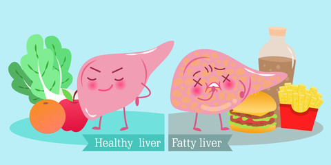 liver with health concept