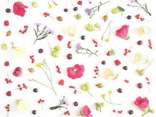 Floral and plants on white background. Frame of flowers. March 8, mother's day background. Top view, flat lay. Composition of wild flowers. Flower pattern.