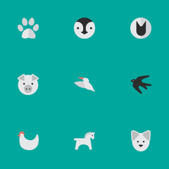 Vector Illustration Set Of Simple Zoo Icons. Elements Tomcat, Foot, Steed And Other Synonyms Bird, Swallow And Footprint.