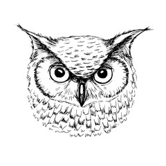 Vector sketch of owl head ballpoint pen