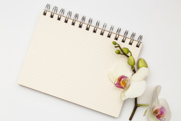 Notebook with beautiful flower congratulations concept