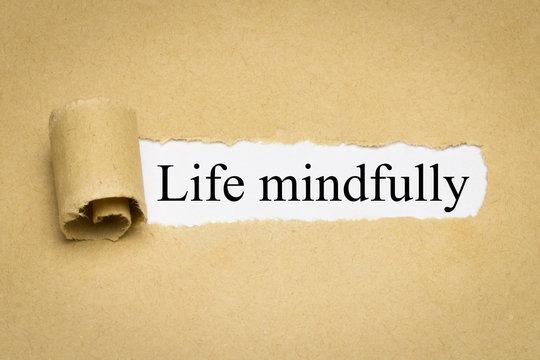 Life mindfully