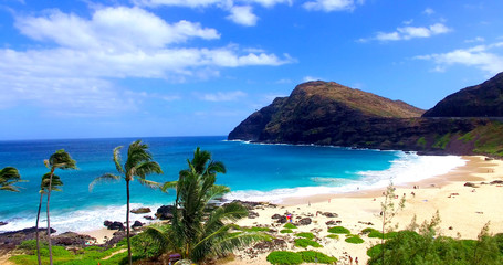 Palm Trees on Sandy Tropical Beach with Beachgoers and Blue Water Bay - Oahu, Hawaii