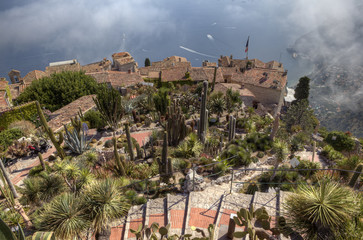 Le Jardin exotique d'Eze - The Exotic Garden of Eze