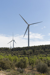 Windmills for sustainable renewable energy in rural landscape