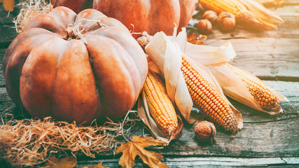 Thanksgiving day background. Orange pumpkins  over wooden background